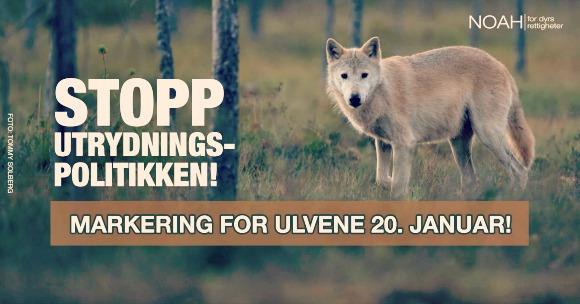 ulvmarkering-2